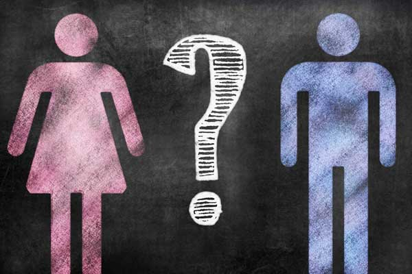 Gender theory article, Florida Citizens Alliance, Naples, FL